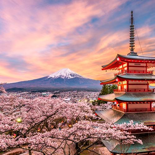 descubriendo-ruta-shoganai-japon